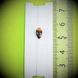 新作ポン太工房プロトタイプの中通し浮き仕掛け 山吹 蛍光オレンジ(トップ)/黒(ボディ)  モノスレッドスモーク