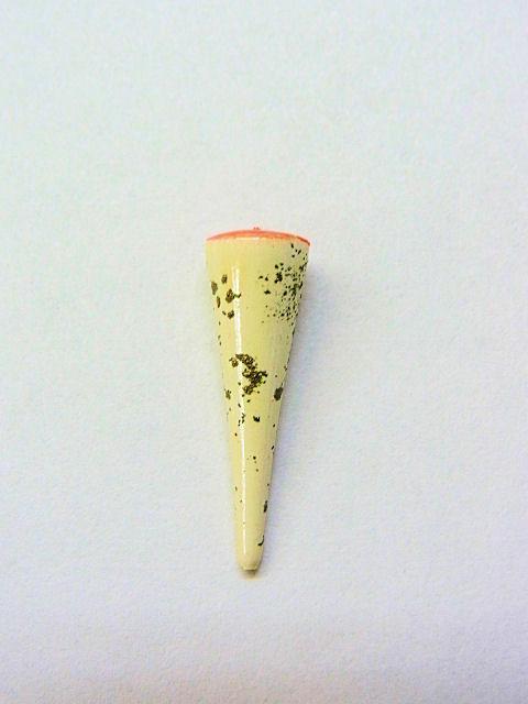 画像1: タナゴ用中通し浮き(真ん中通し)