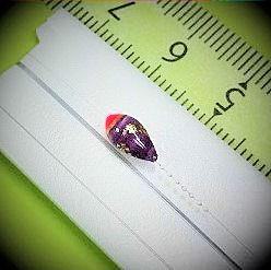 画像2: 新作ポン太工房プロトタイプの中通し浮き仕掛け 山吹  ピンク(トップ)/紫(ボディ) モノスレッドスモーク